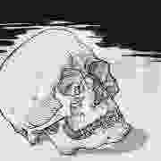 Death-Calavera, 1992
