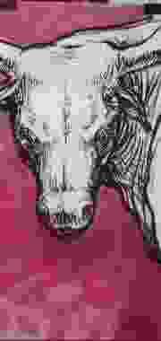 Toro, Colección Particular.