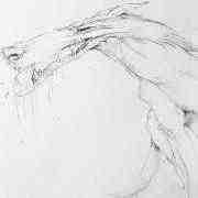 Dibujos Lobo