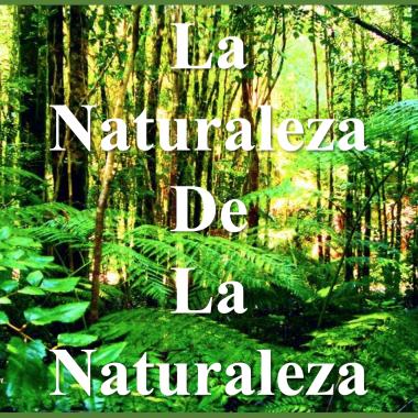 La Naturaleza de la Naturaleza
